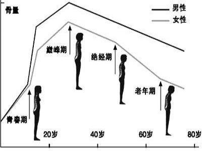 骨密度低对人体的影响怎样增加骨密度
